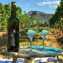 Summer Picnic Wine Table Winery