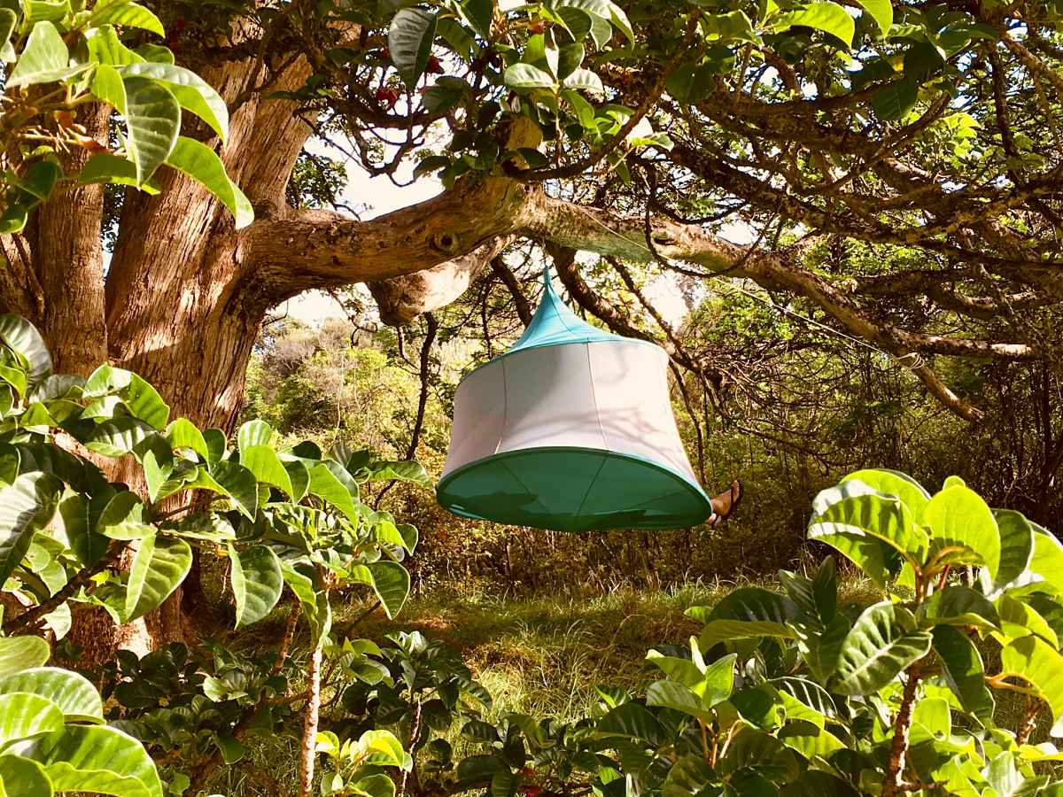 Glamping, Hanging Tent, camping supplies, glamping gear & outdoor products!