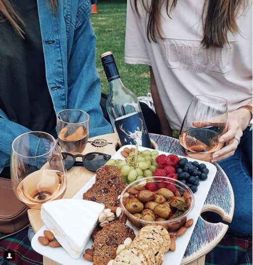 Summer Picnic Wine Table foldable portable compact platter friends